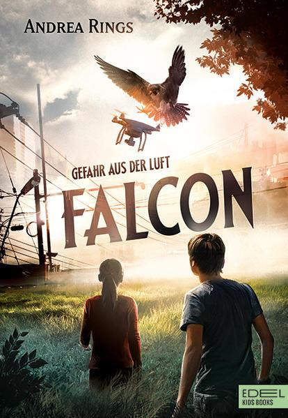 Falcon - Gefahr aus der Luft (Mängelexemplar)