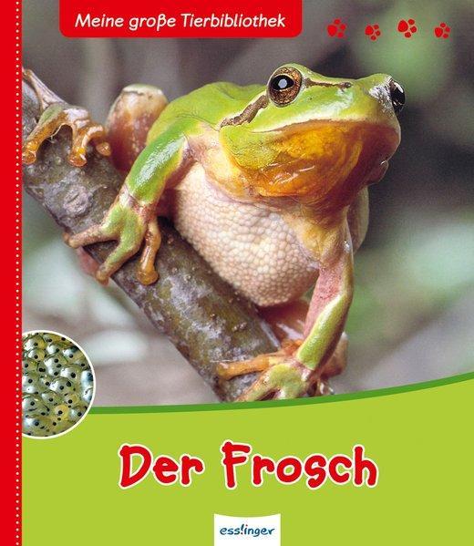 Meine große Tierbibliothek: Der Frosch (Mängelexemplar)